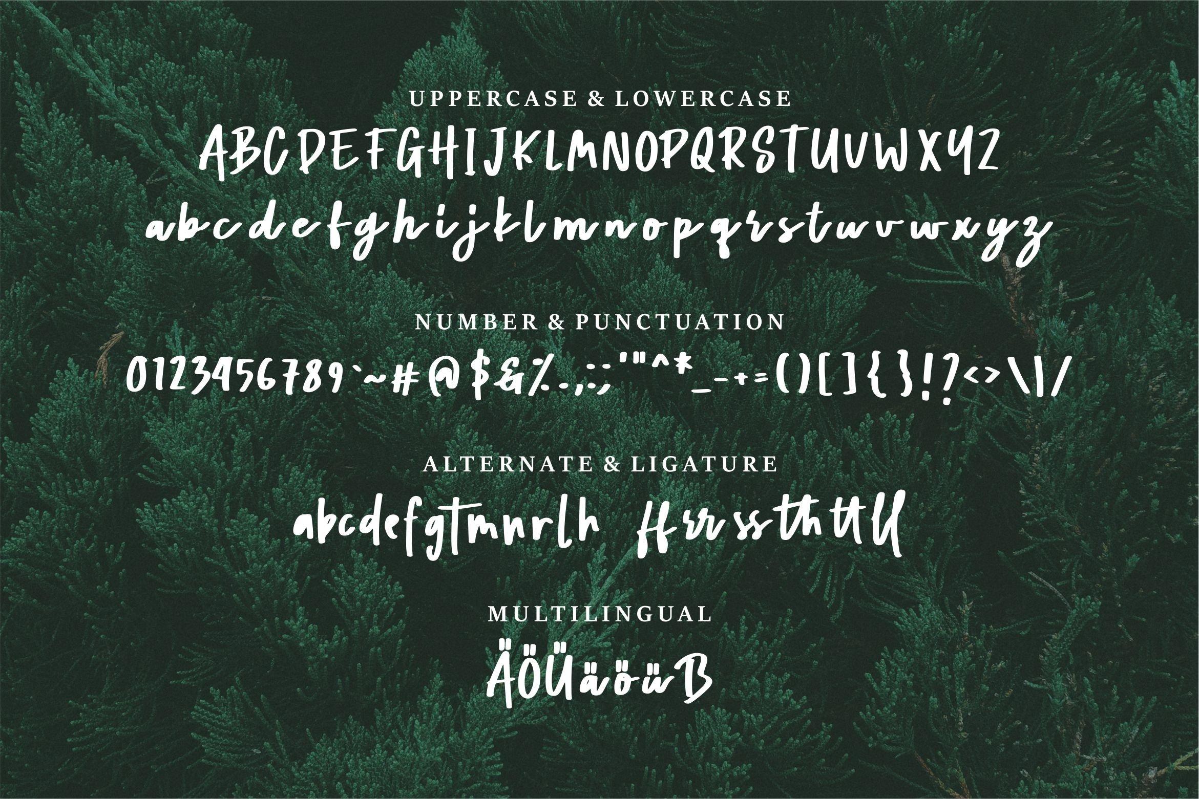 Mathaniel - Bold Beauty Script Font example image 6