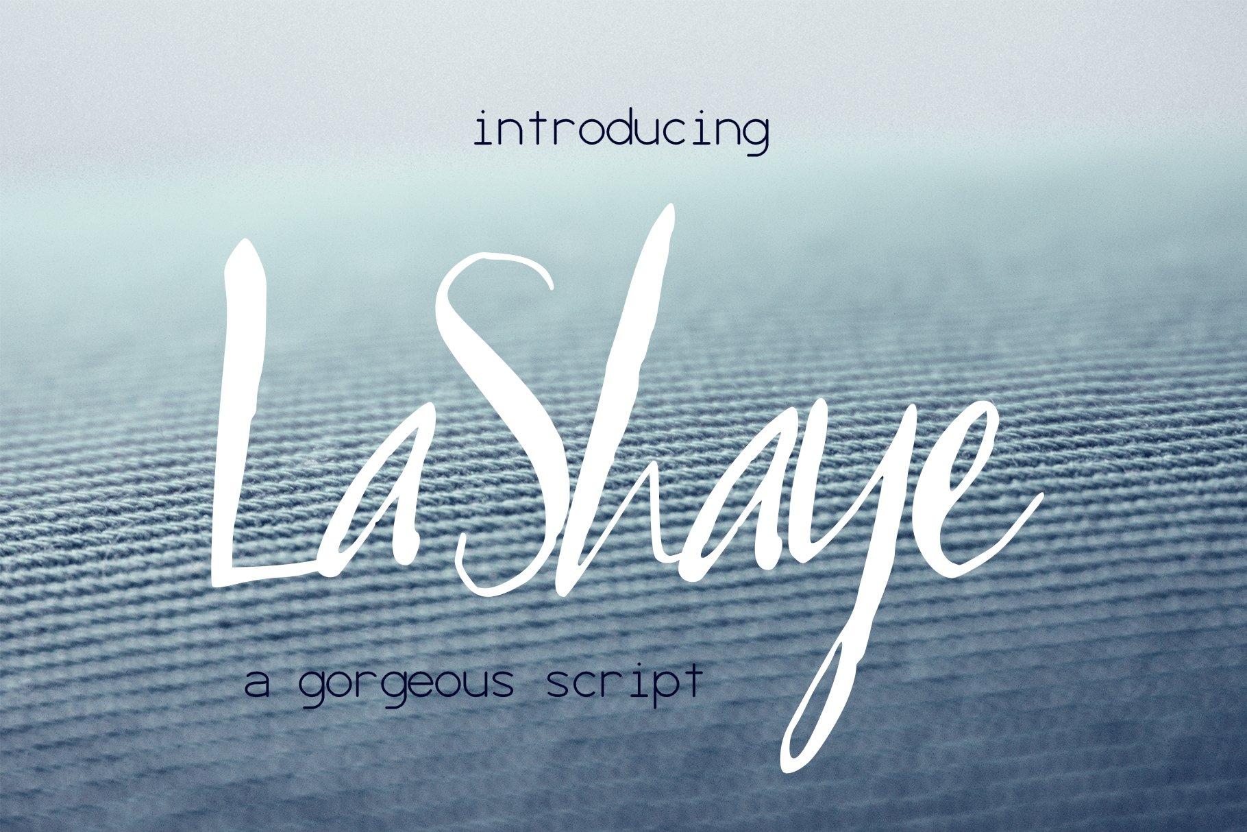 LaShaye Font example image 1