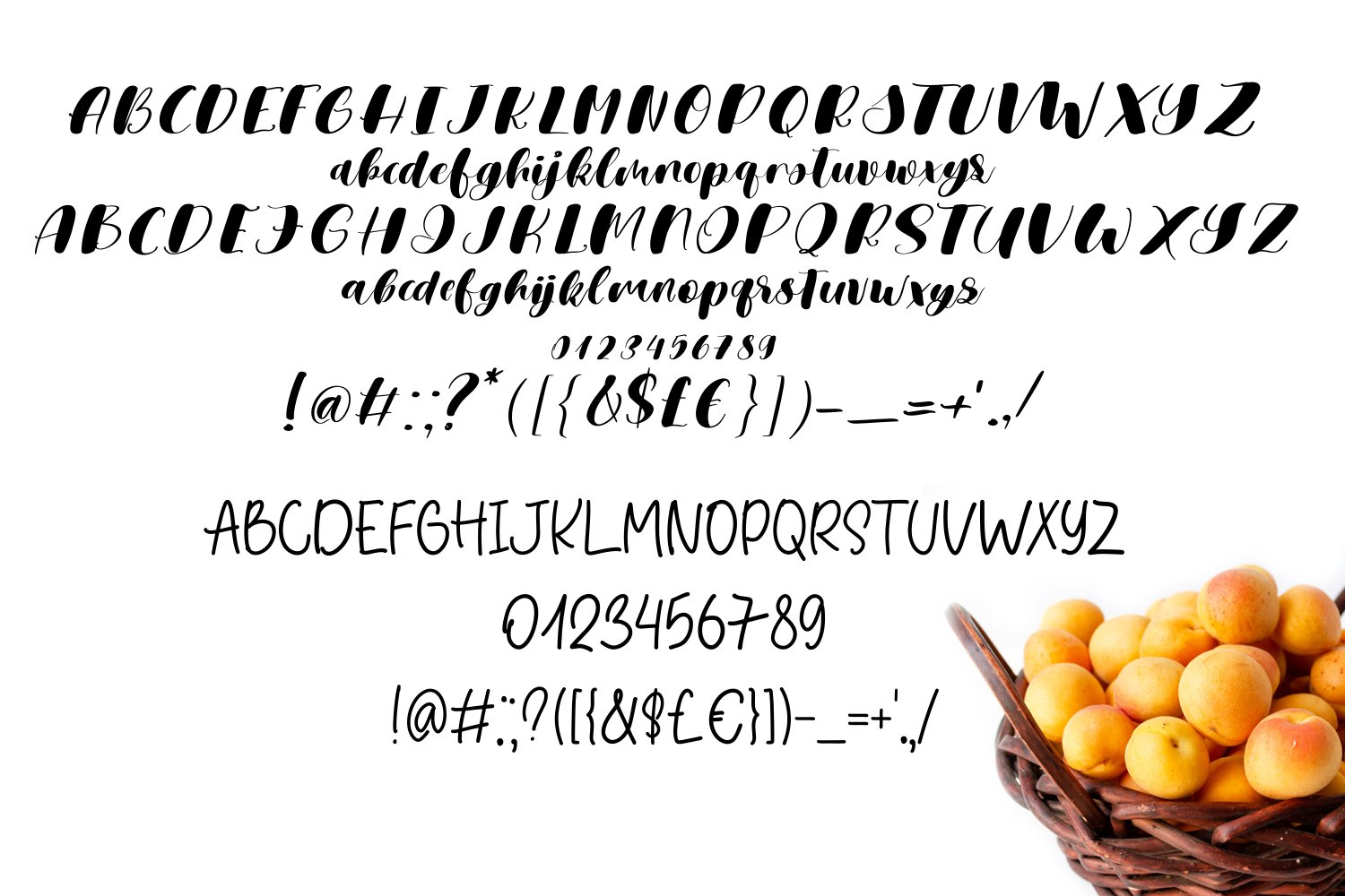 Apricot Space Font Duo example image 3