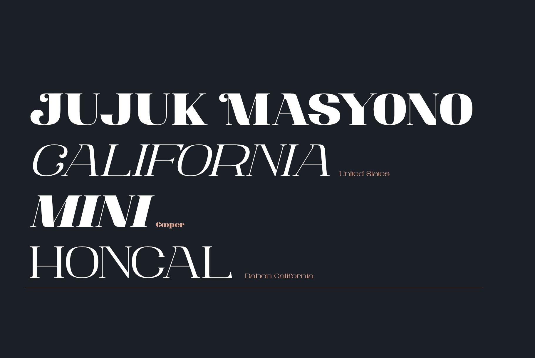 ANTONIA - The Classino Serif example image 3