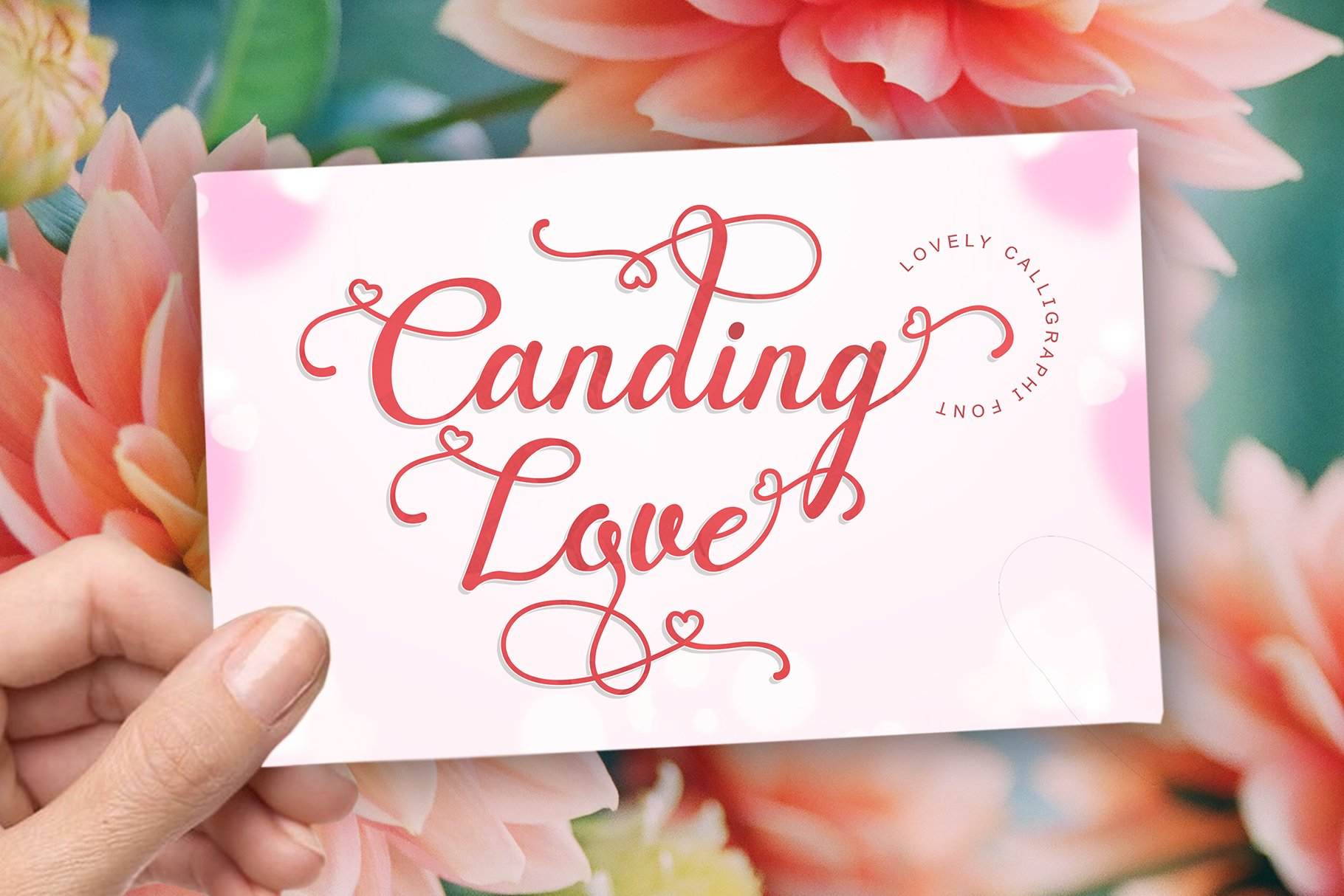 Canding Love - Script font Type face example image 1