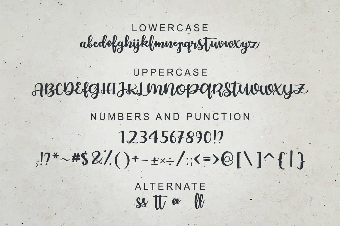 Bellco -Handwritten Font example image 4