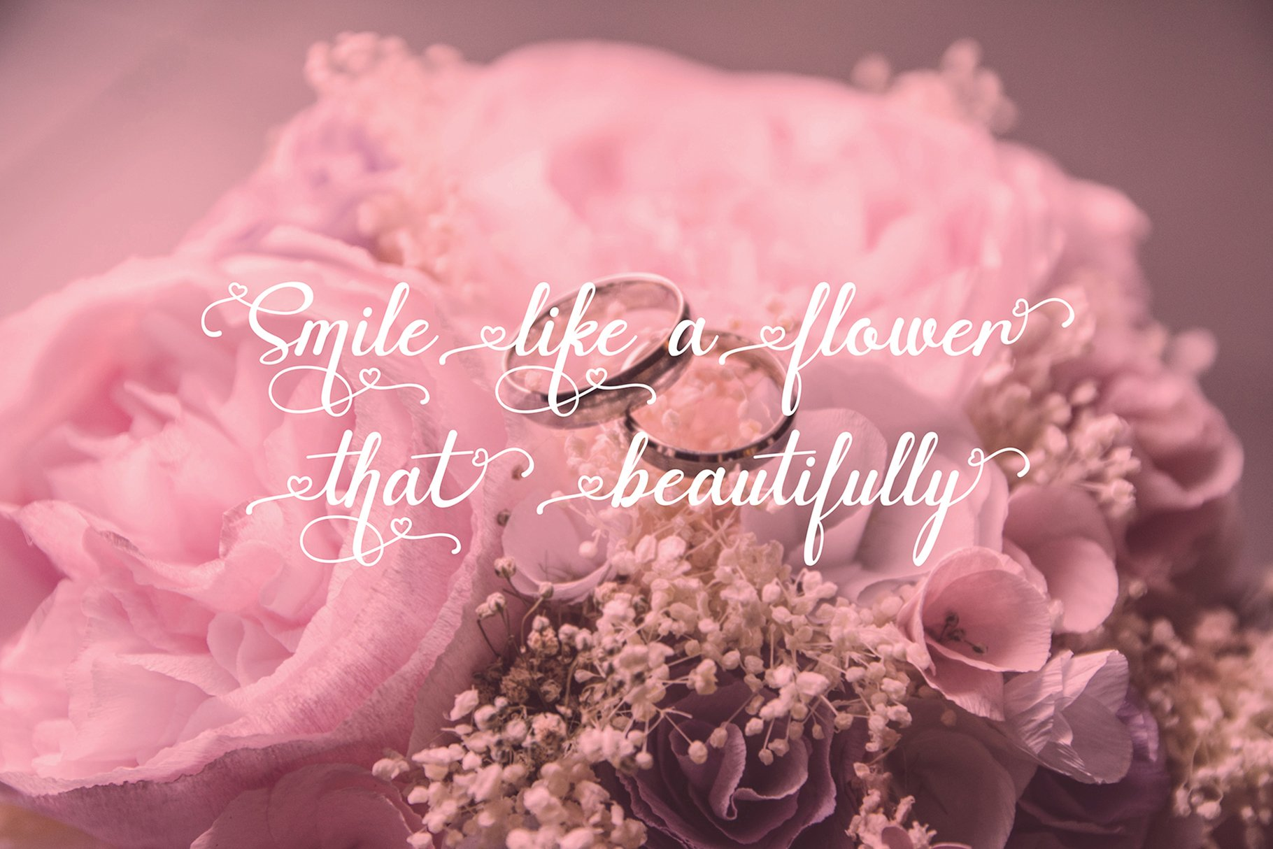 Canding Love - Script font Type face example image 3