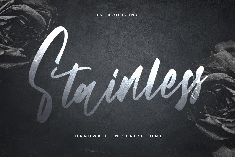 Stainless - Handwritten Script Font example image 1