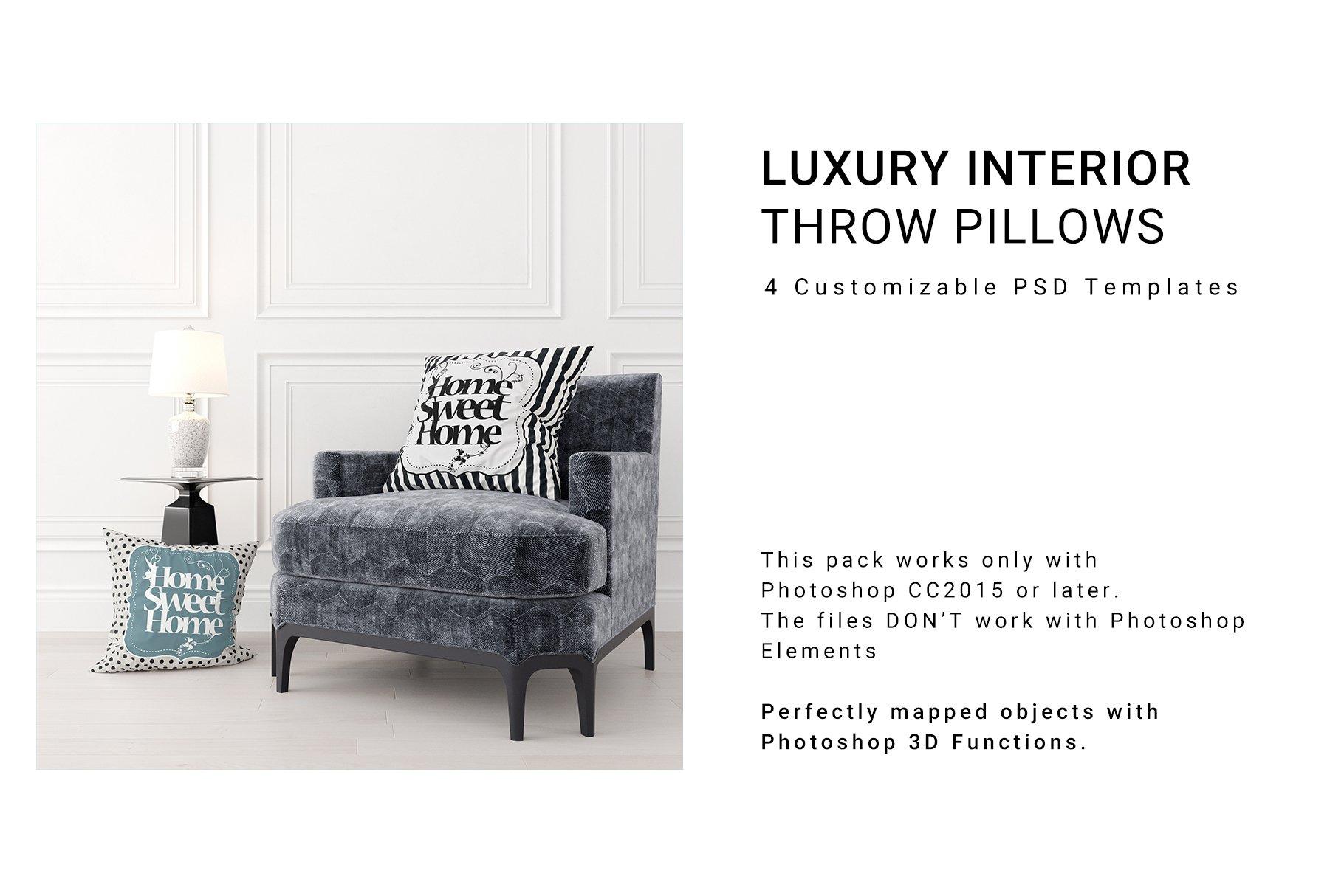 Luxury Interior Throw Pillows Set example image 1