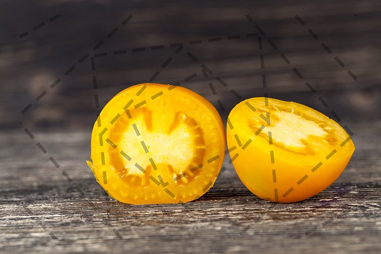 yellow tomato example image 1