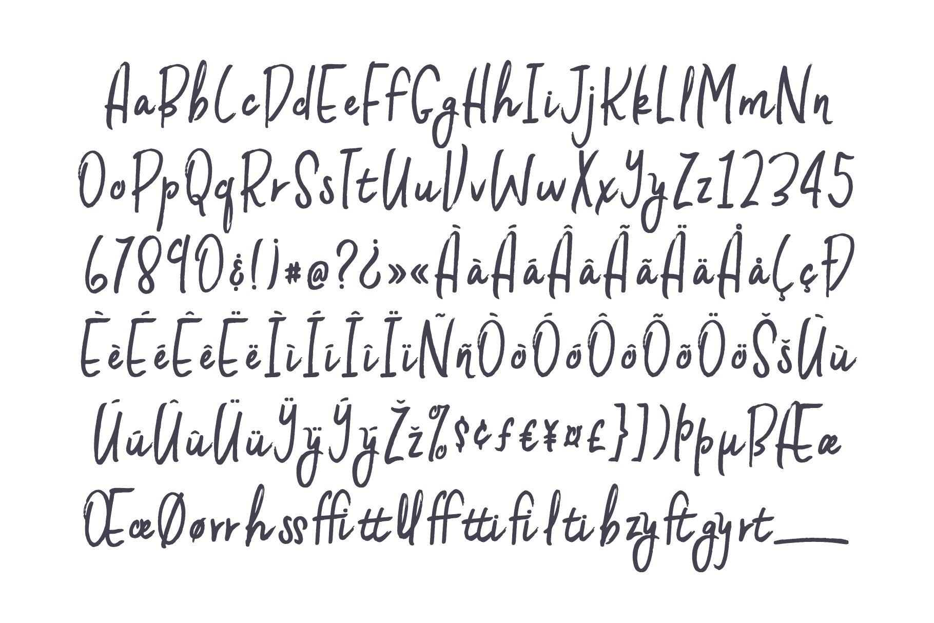 Bella Ray Script example image 9