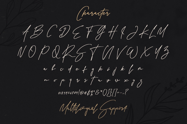 Rindu Alam - Signature Script Font example image 14