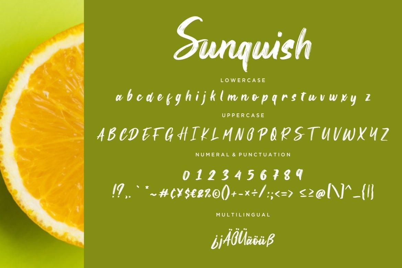 Sunquish Stylish Handbrush example image 3