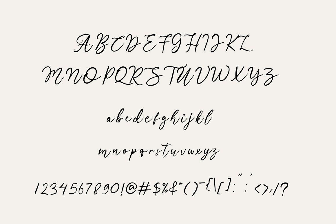 Manira Script example image 6