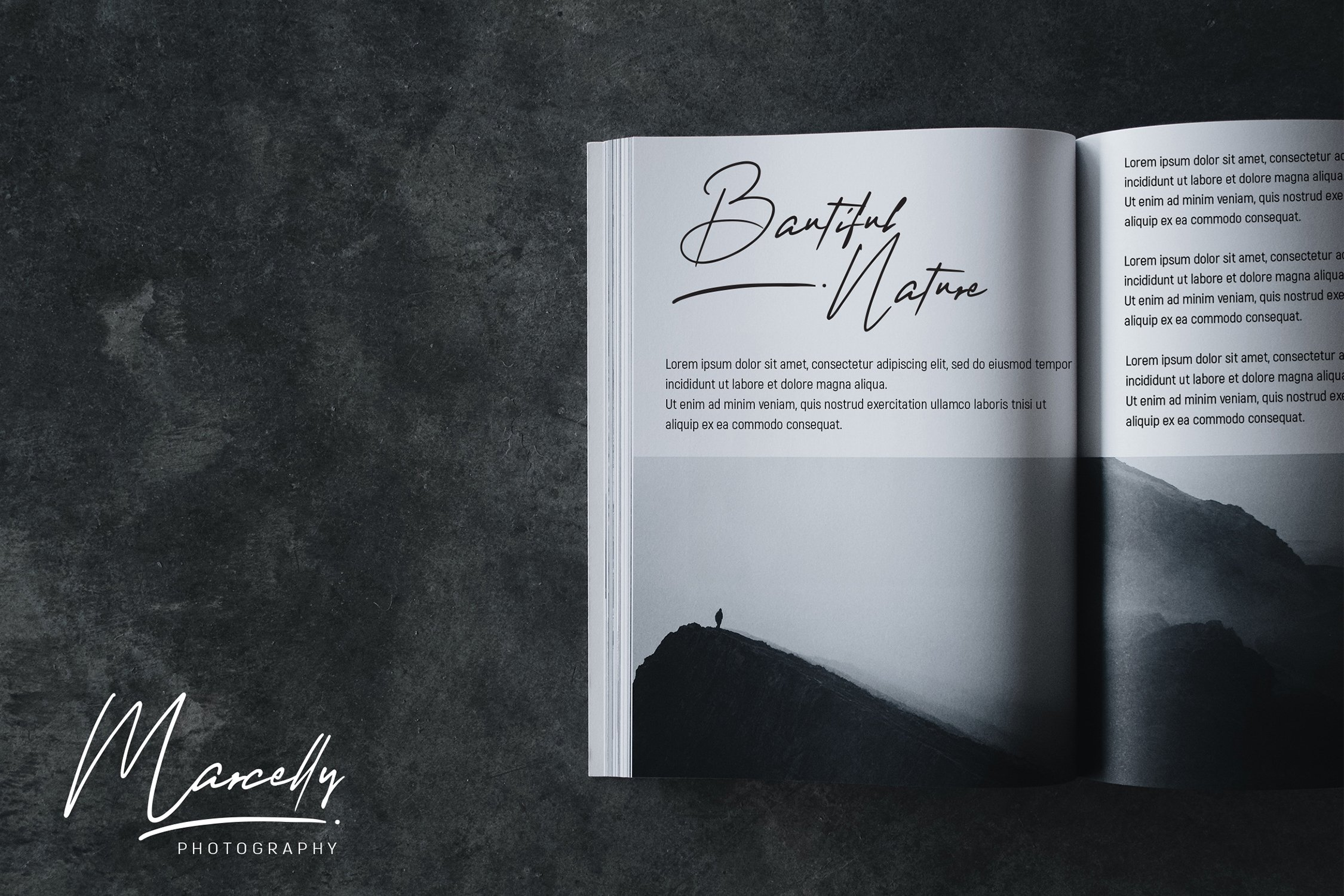 Marcelly - Beautiful Script Font example image 7