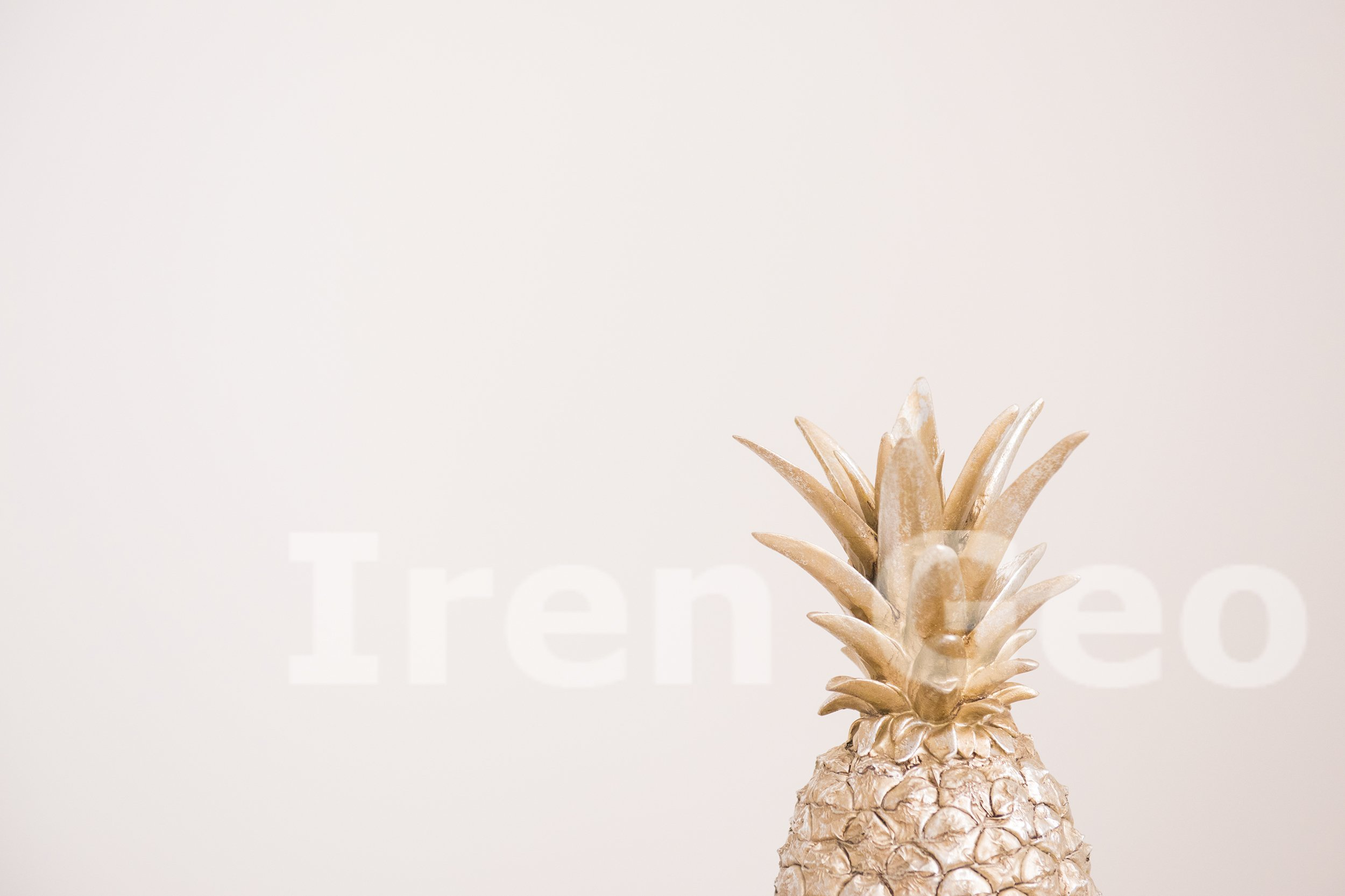 Decorative pineapple on gray background. Copy space example image 1