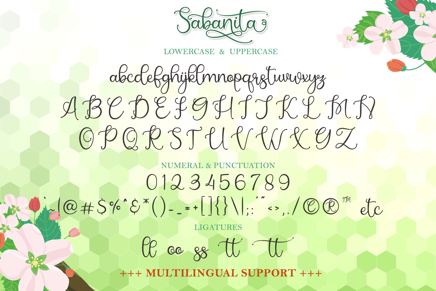 Sabanita example image 10
