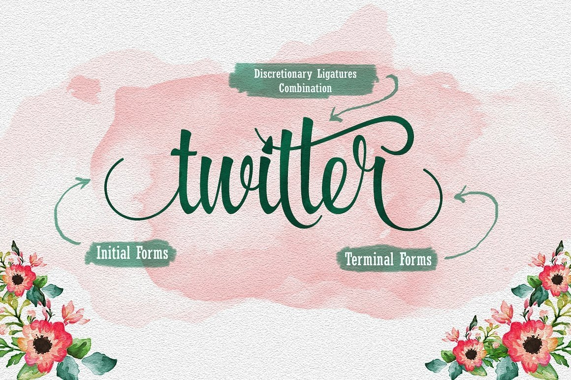 Font Bundle includes 54 fonts in 40 Typefaces example image 16