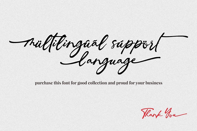Ingkar Janji - Stylish Script Font example image 15