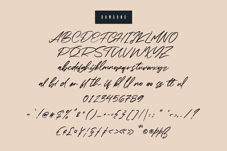 Dawsons Script - Free Sans Font example image 2