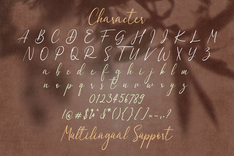 Dulan Anzelica - Signature Script Font example image 14