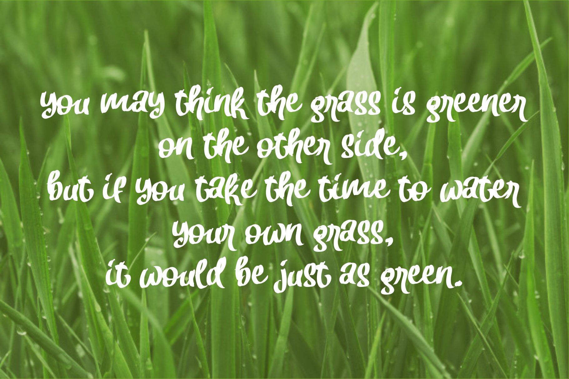 Fresh Grass example image 3