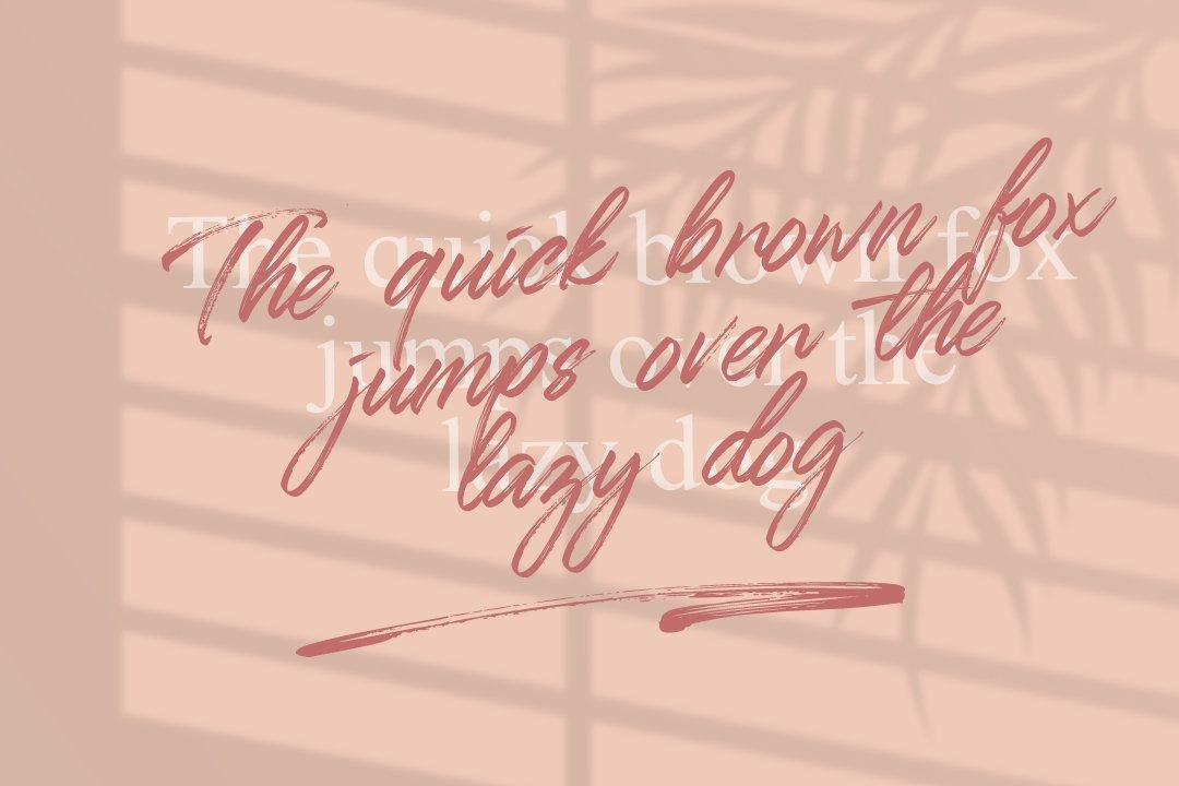 Qillsey Einstein - A Handwritten Font example image 12