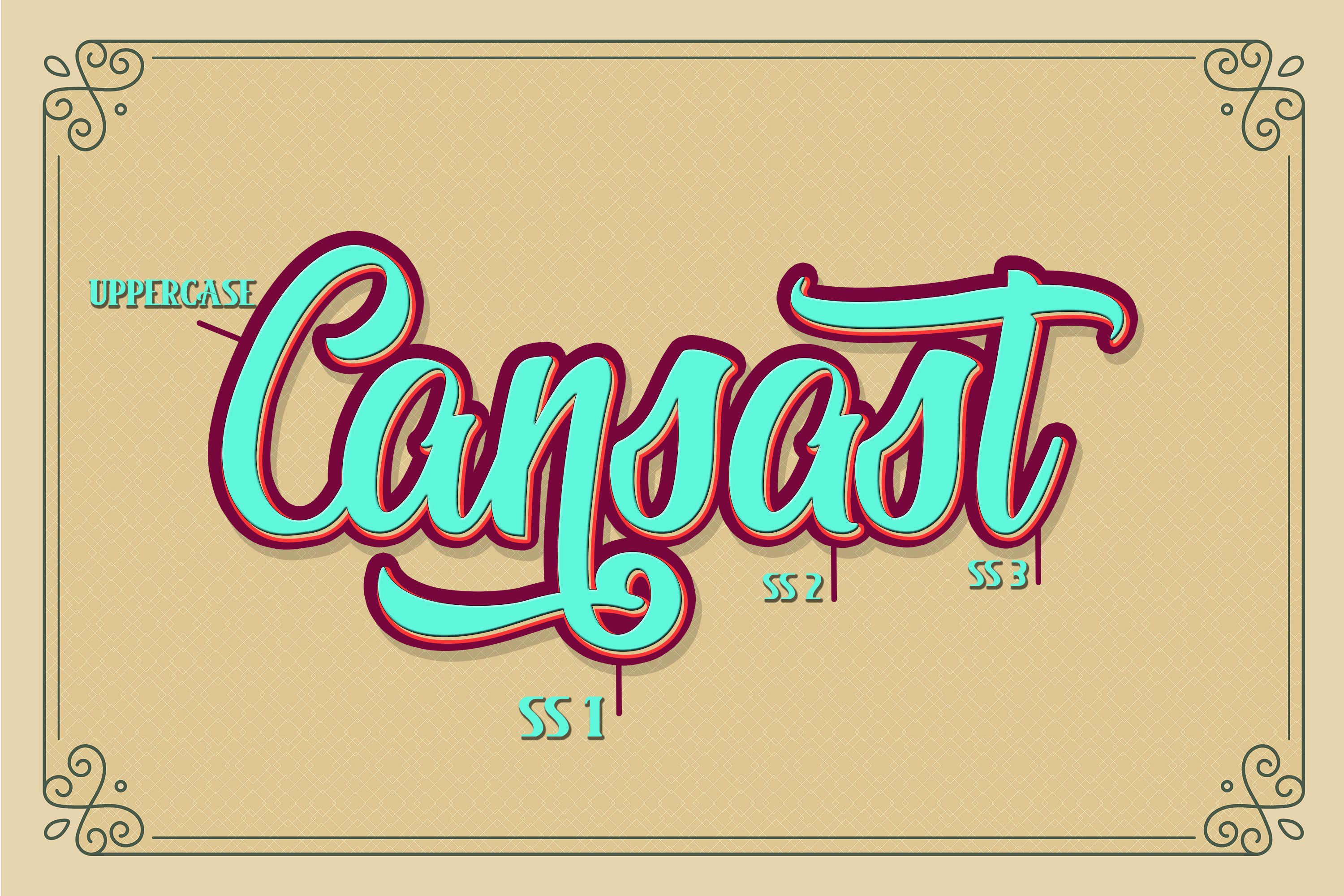 Cansast Font Duo example image 5