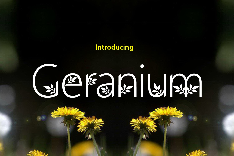 Geranium example image 2