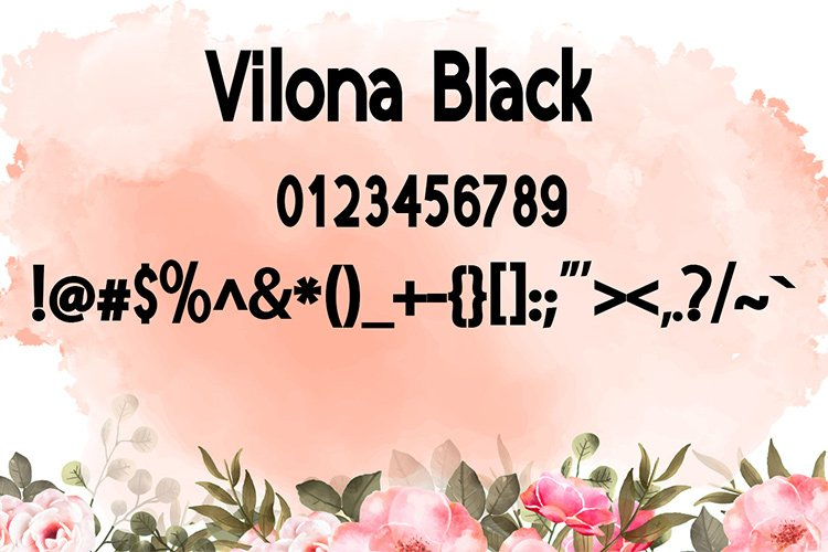 Vilona |Three Typeface example image 13