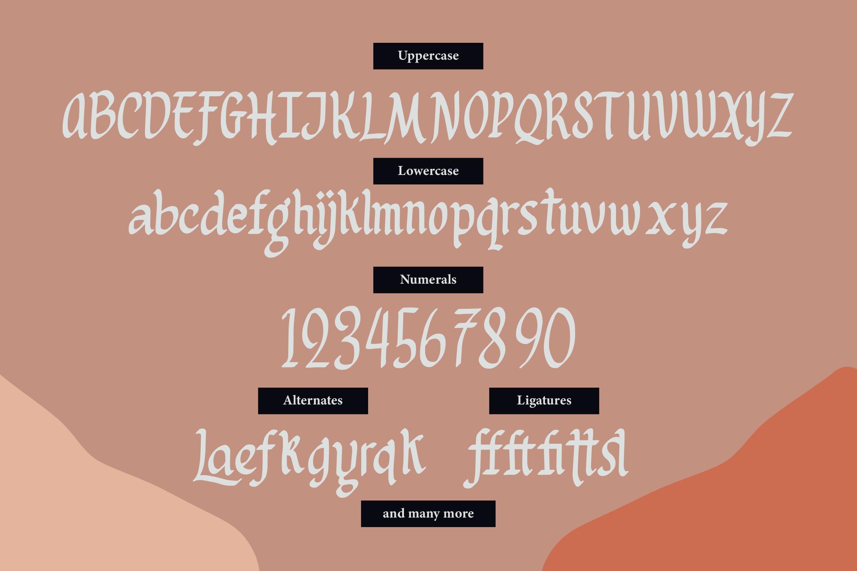 Lattogea - Casual Broadpens Fonts example image 2