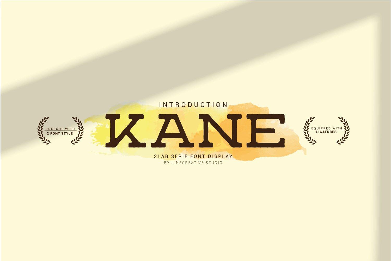 Kane example image 1
