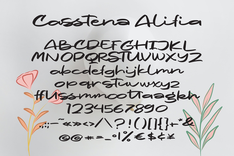 Casstena - Script Fonts example image 2