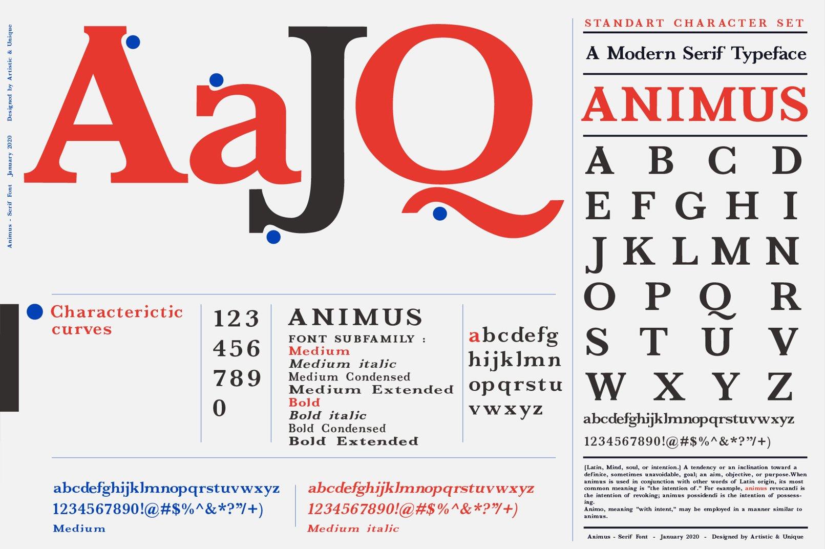 ANIMUS - Serif font family example image 2