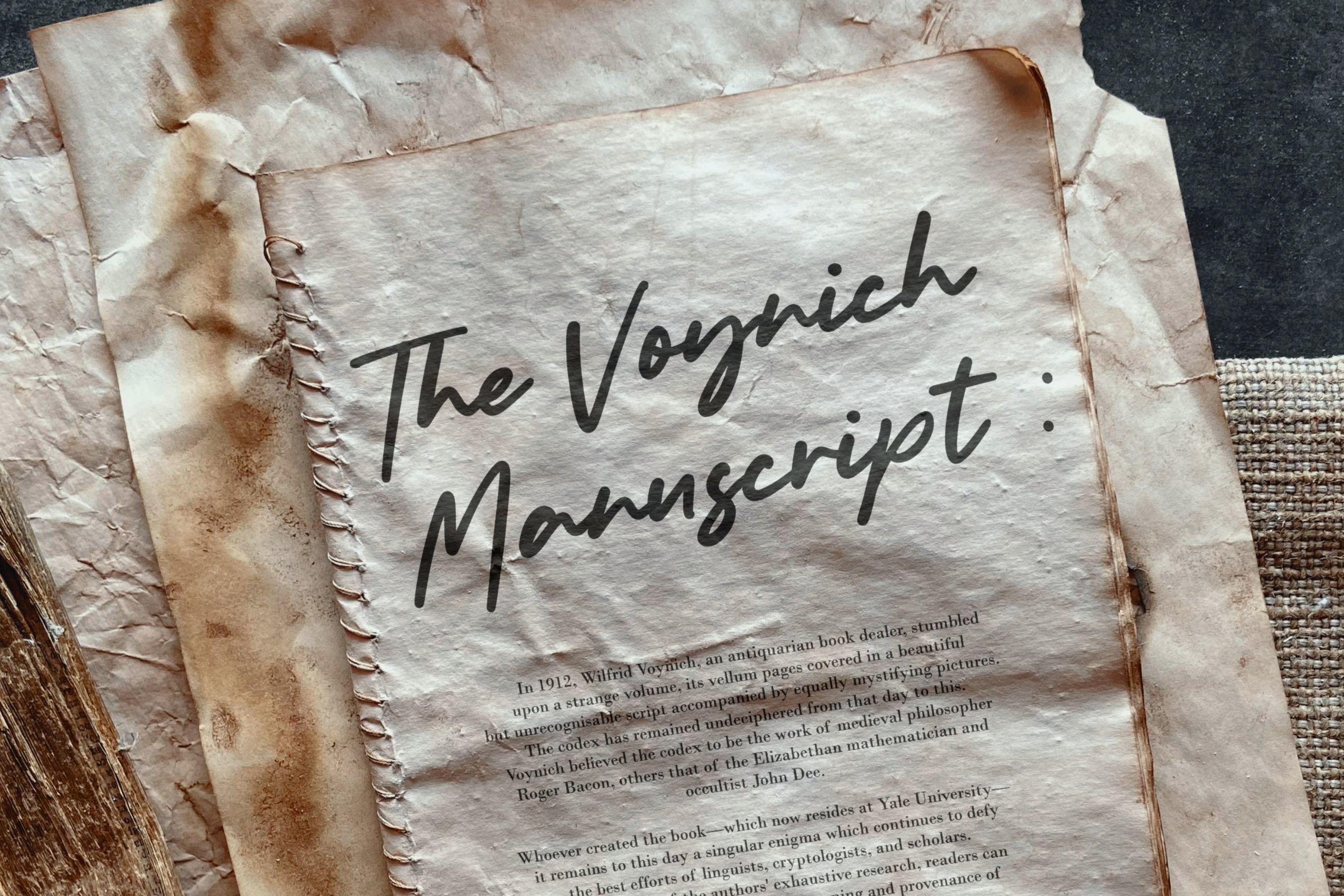 Bolognaise Monoline Handwritten Font example image 5