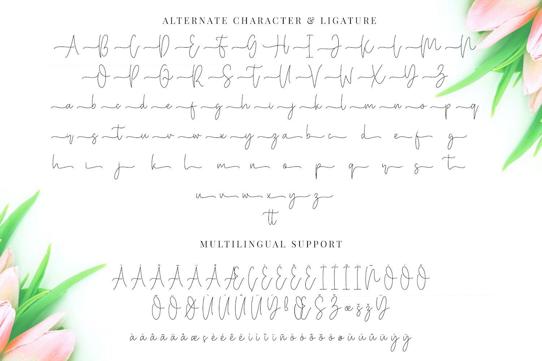 Miya Wayne - Modern Lovely Script Font example image 14