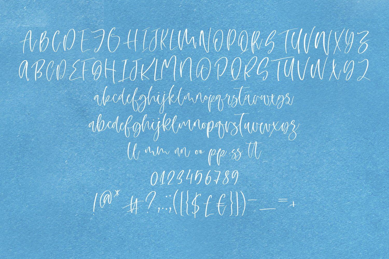 Lemon Love Font Duo example image 4