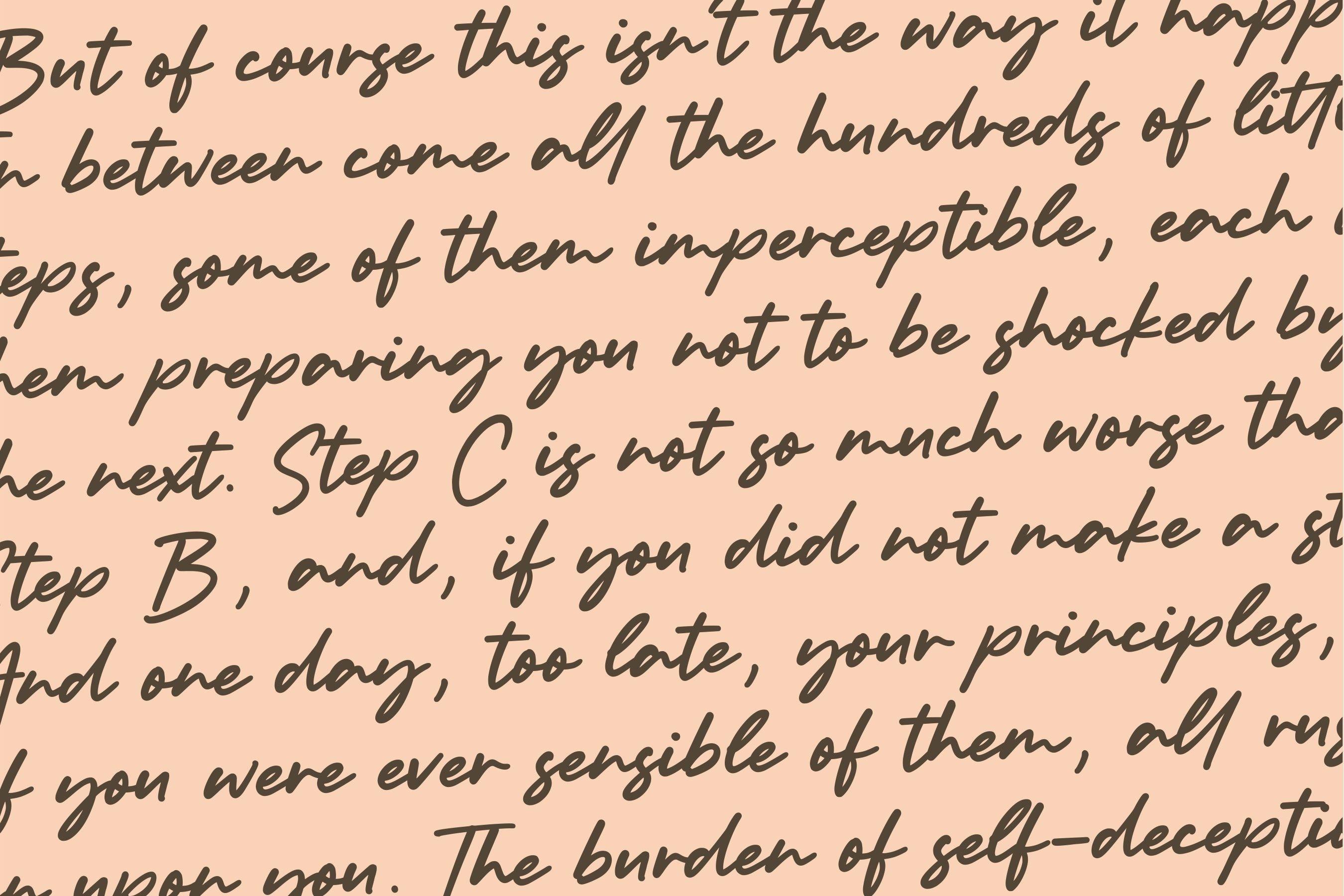 Bolognaise Monoline Handwritten Font example image 6