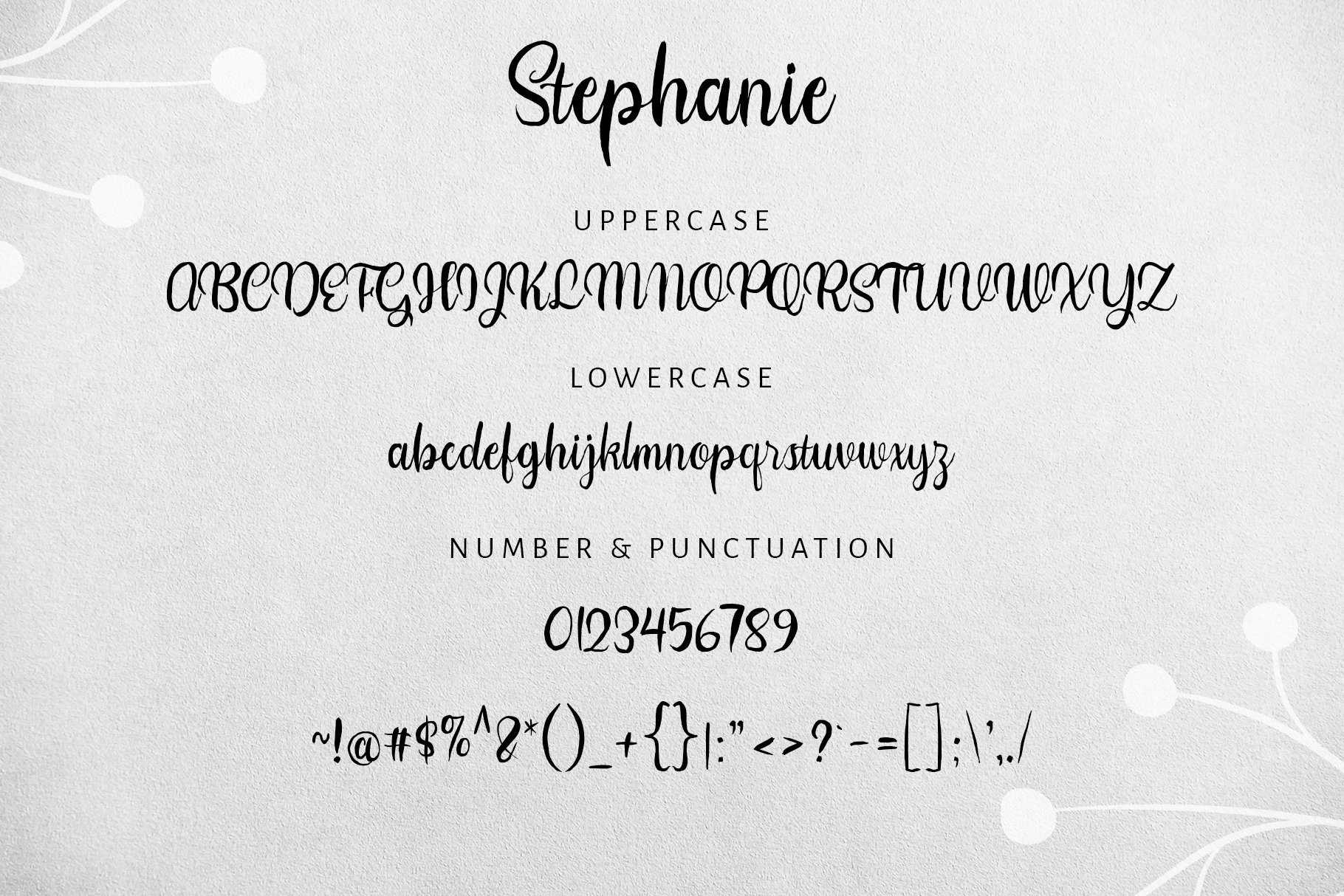 Stephanie Script Font example image 11