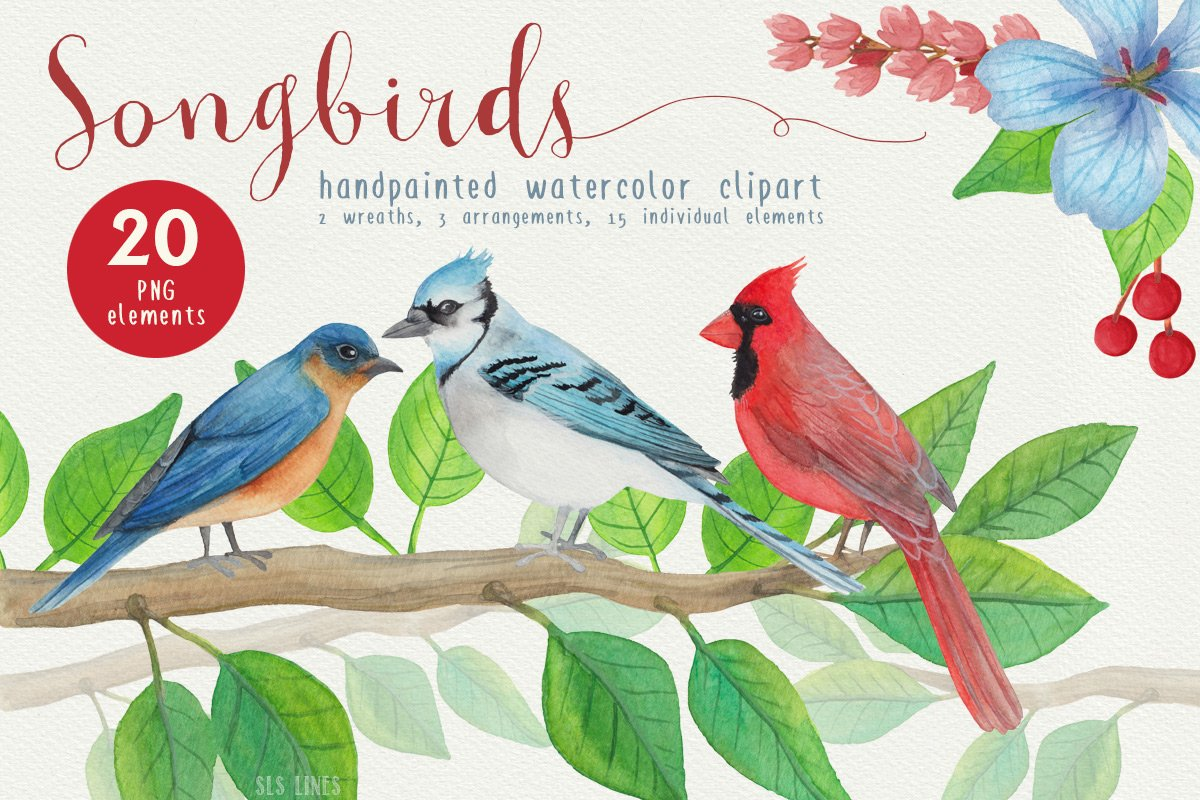 Big Animals & Birds Illustration Bundle example image 25