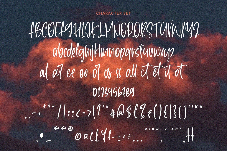 Whitstand - Handwritten Font example image 8