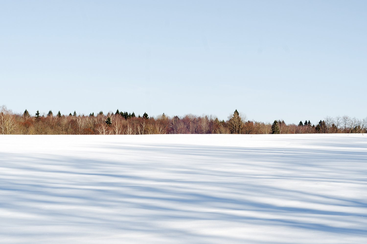 Winter landscape. Shadows on the white snow. example image 1