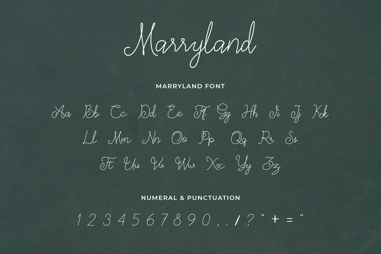 Marryland Handwritten Script Monoline example image 4