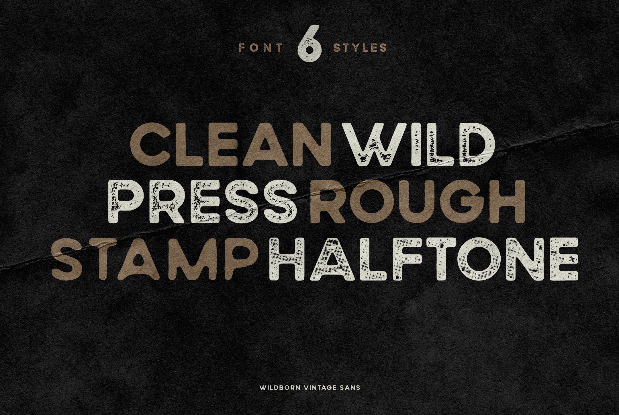 Wildborn Vintage Sans example image 8