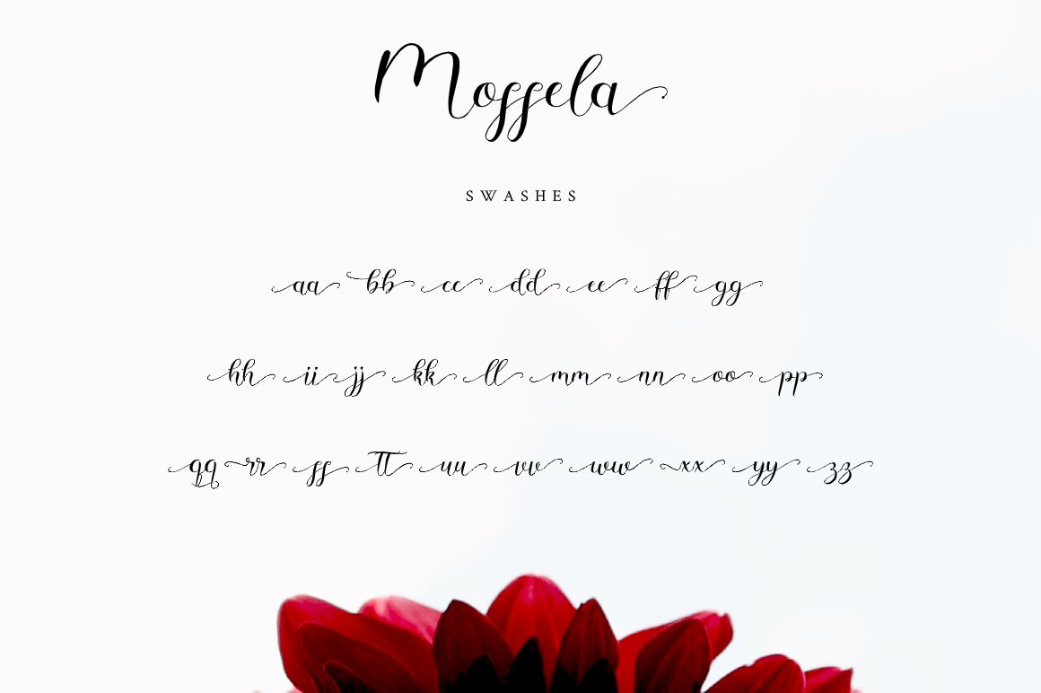 Mosella example image 11