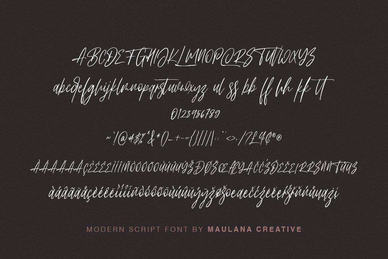 Arttifac - Modern Script Font example image 10