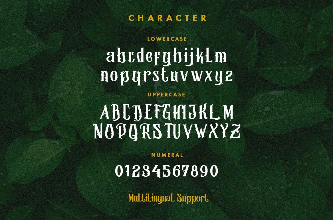 Morgana - Display Font example image 13