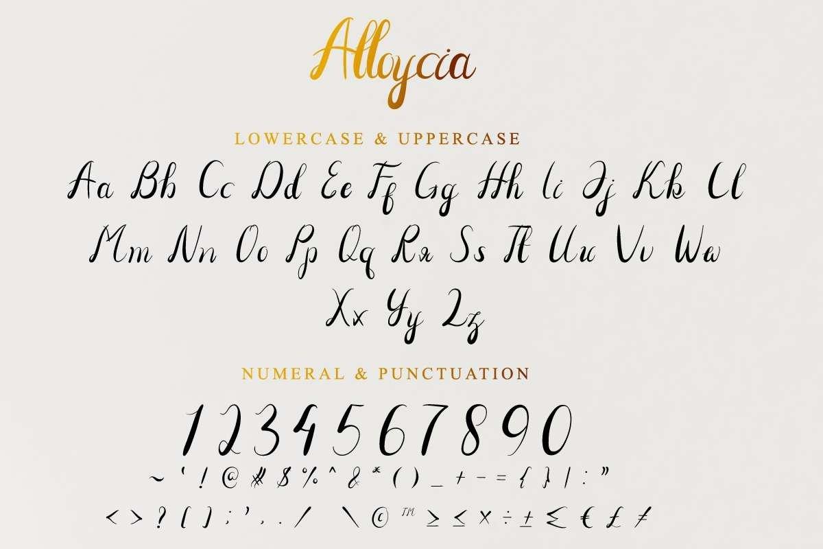 Alloycia example image 3
