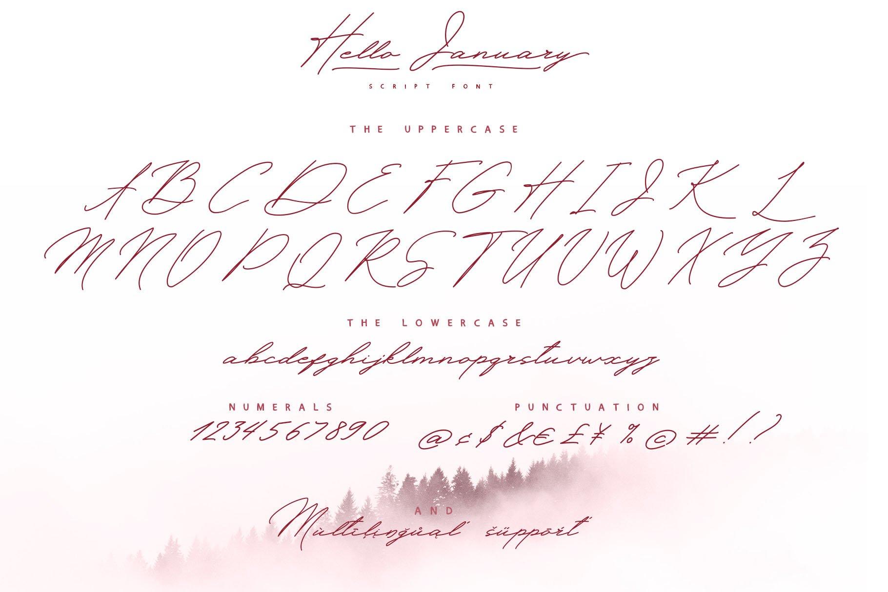 Hello January cursiv font Cyrillic example image 2
