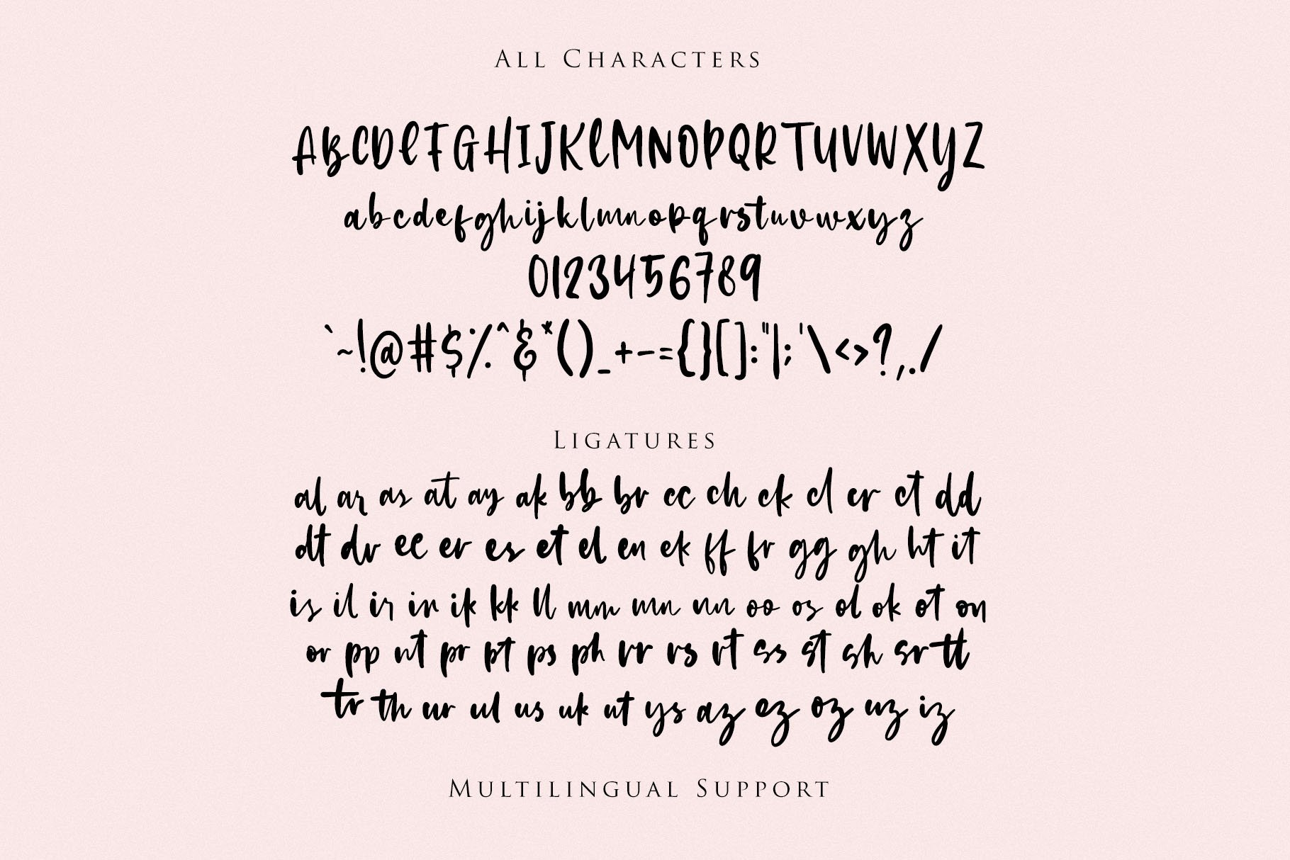 Hachiko - Handwritten Font example image 8