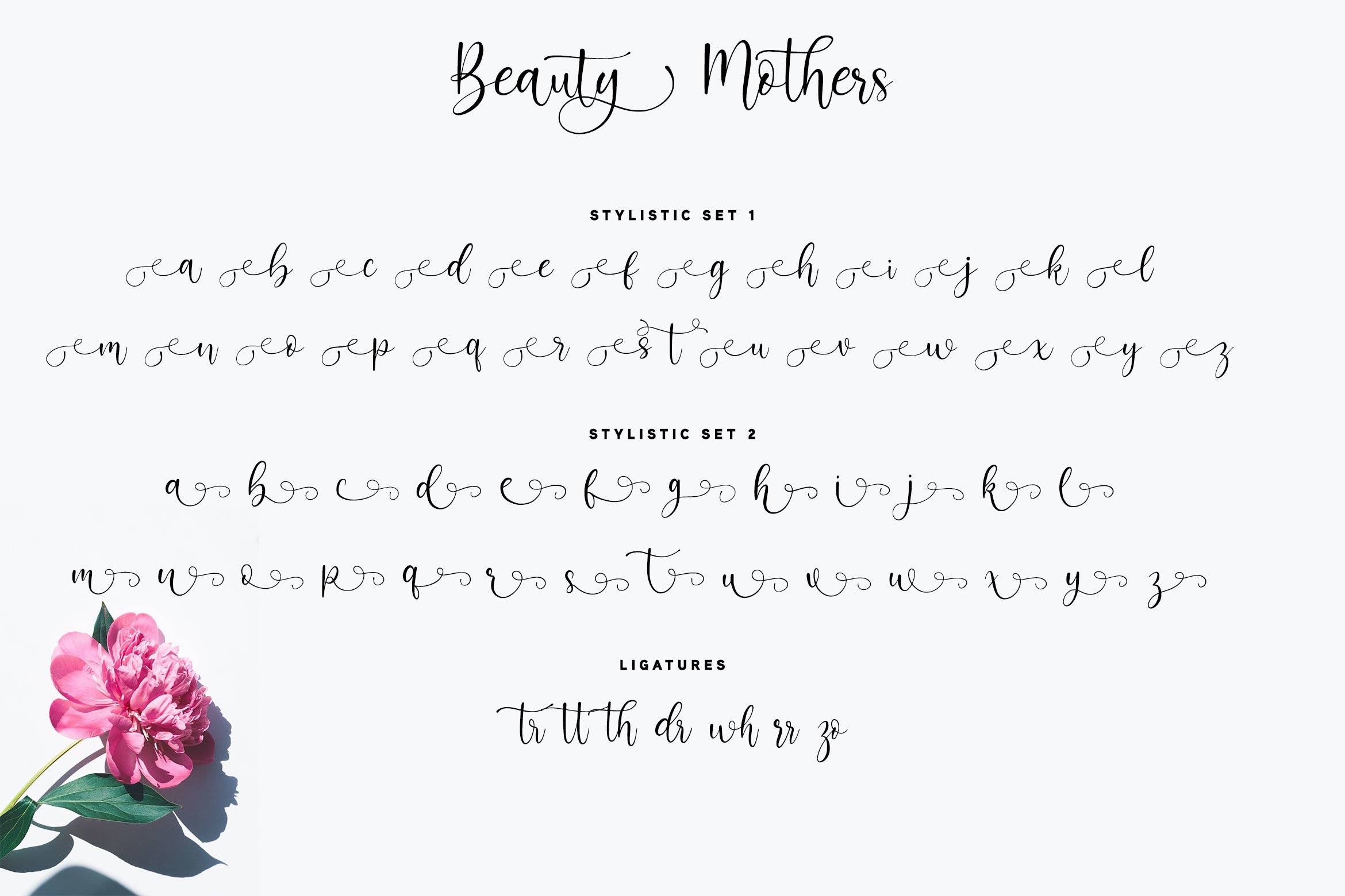 Beauty Mothers Script example image 4