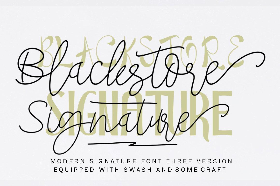 Beauty Font Bundles example image 12