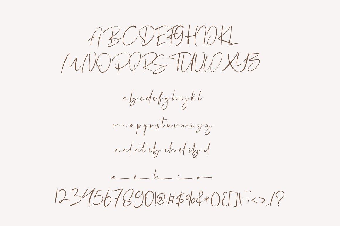 Boilgo - Luxury Signature Font example image 6