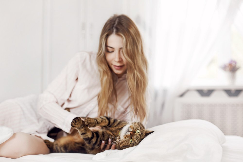 Cute young girl is lying with her cat on the bed at home. example image 1